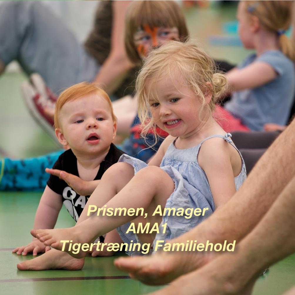 Tigertræning-AMA1 – 2½-3 årig Familiehold for børn og voksen i Prismen
