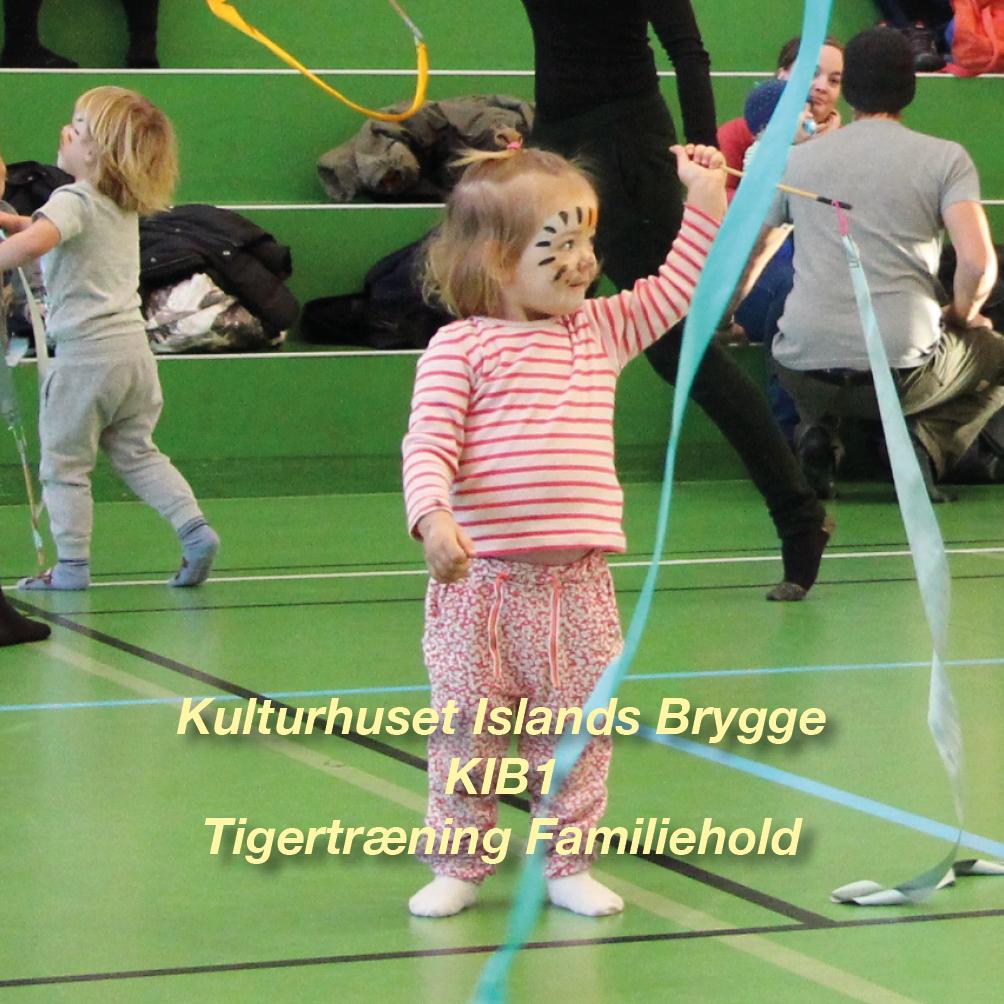 Tigertræning-KIB1 – 2½-3 årig Familiehold for børn og voksen i K-I-B