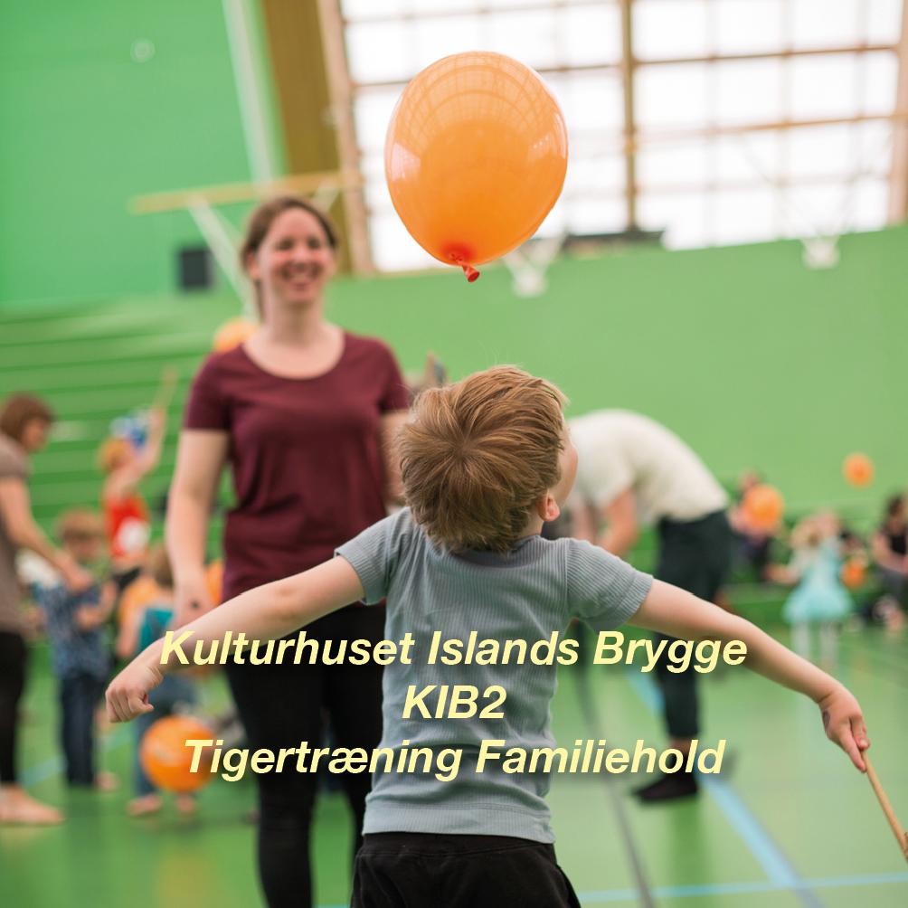 Tigertræning-KIB2 – 4-6 årig Familiehold for børn og voksen i K-I-B