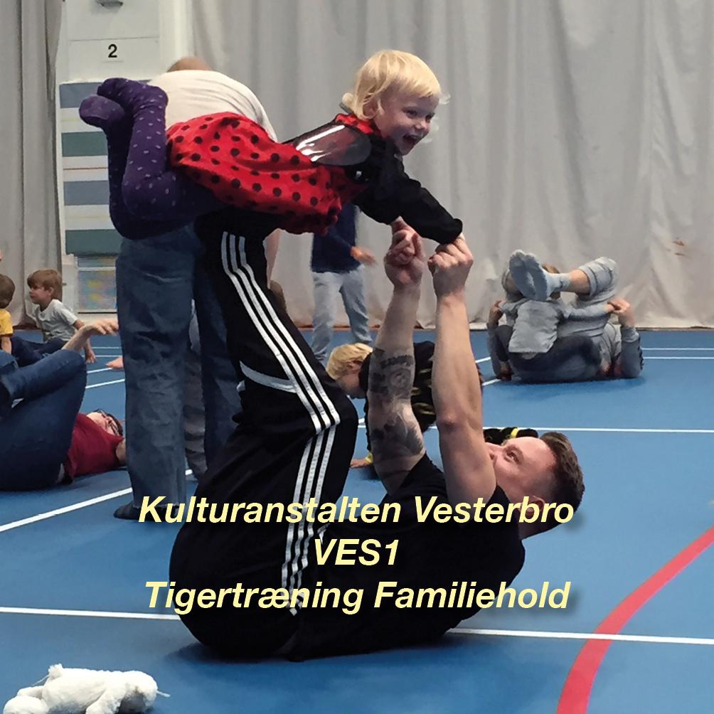 Tigertræning-VES1 – 2½-3 årig familiehold for børn og voksen - Vesterbro