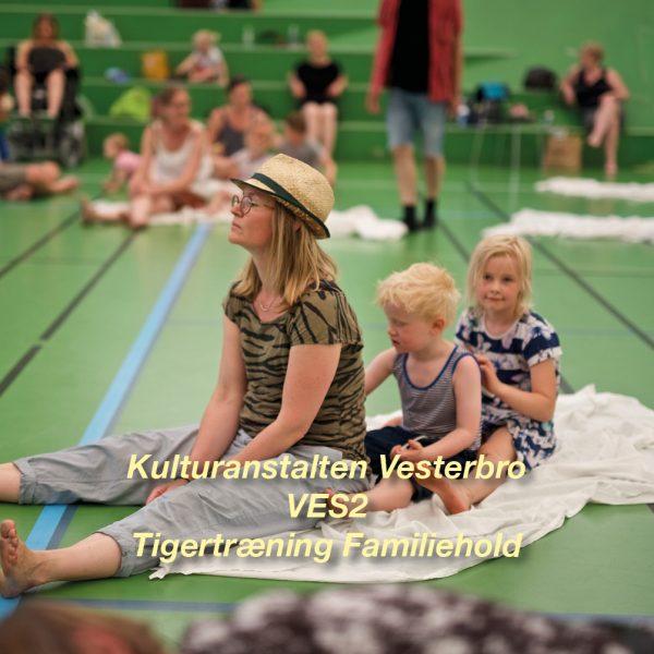 Tigertræning-VES2 – 4-6 årig familiehold for børn og voksen - Vesterbro